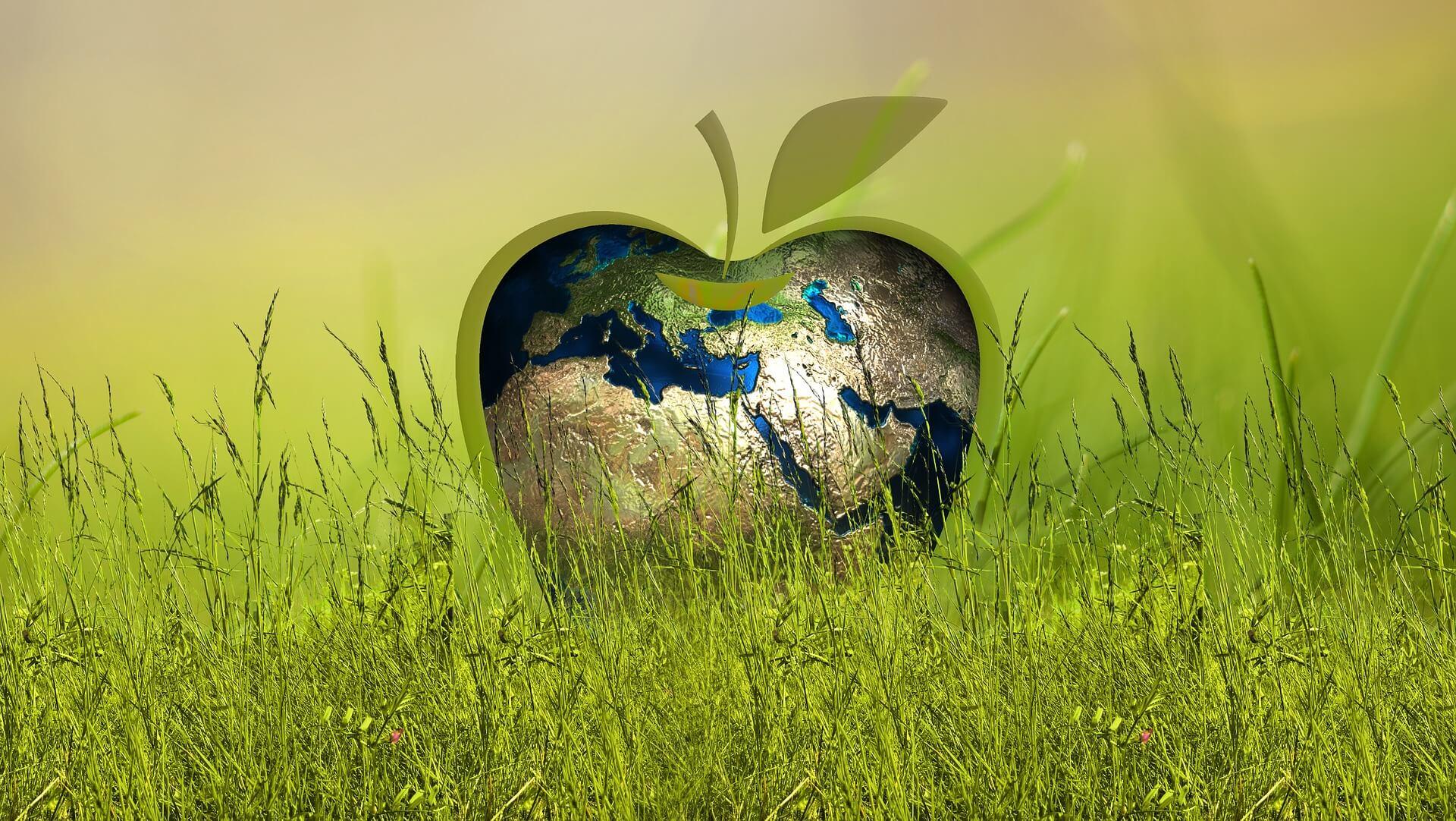 Welke subsidies zijn er voor duurzaam ondernemen?